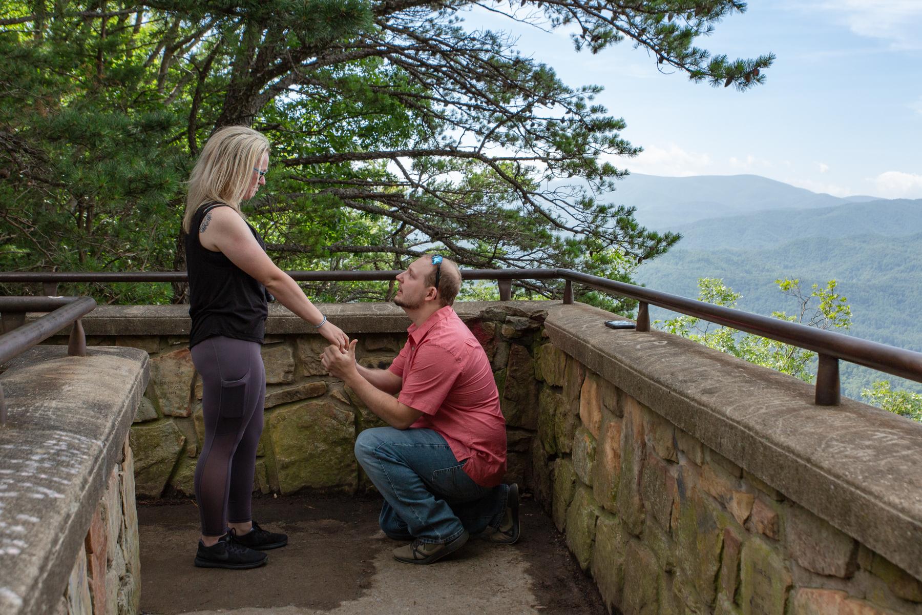 Marriage Proposal 01.jpg