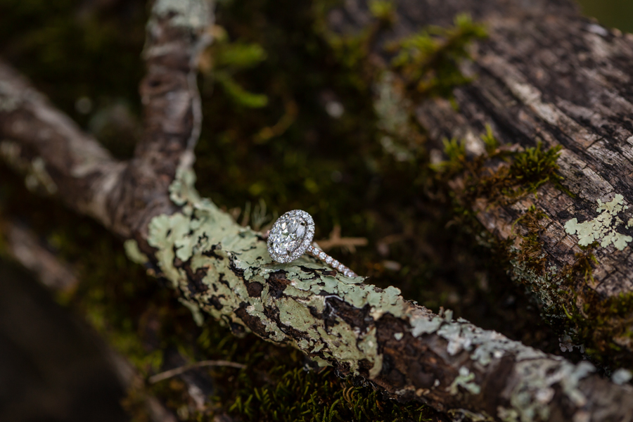 Cades Cove Marriage Proposal-17.JPG