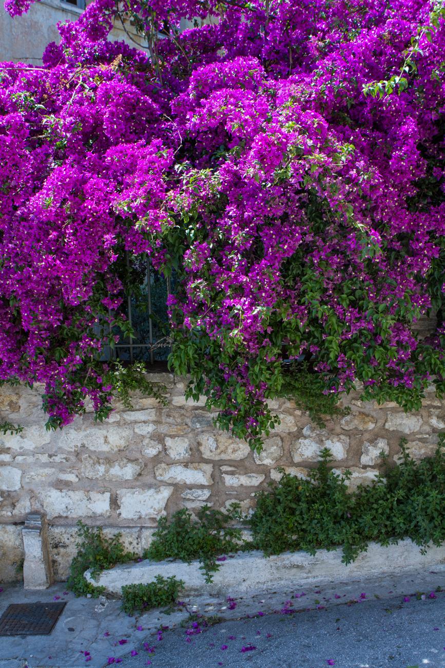 Bolandia_Blog_Vancouver_Athens-Greece-Travel-6440.jpg