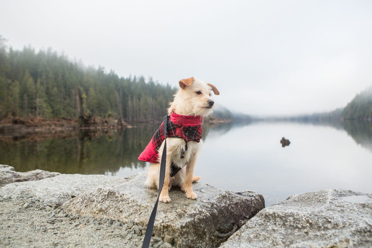 Bolandia_Blog_Vancouver_Bunzten-Lake-2271.jpg