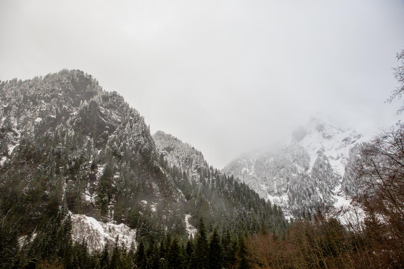 Bolandia-Blogger-Vancouver-Alder-Flats-Hike-Golden-Ears-Park-00317.jpg