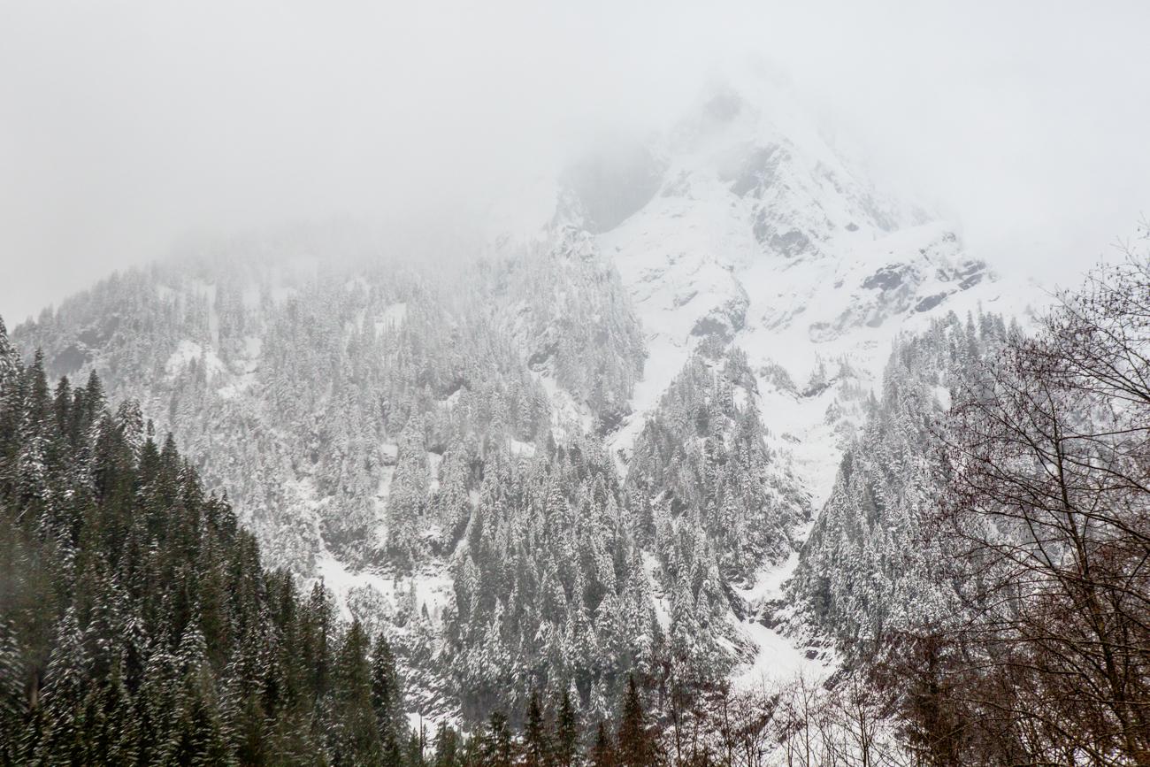 Bolandia-Blogger-Vancouver-Alder-Flats-Hike-Golden-Ears-Park-00318.jpg