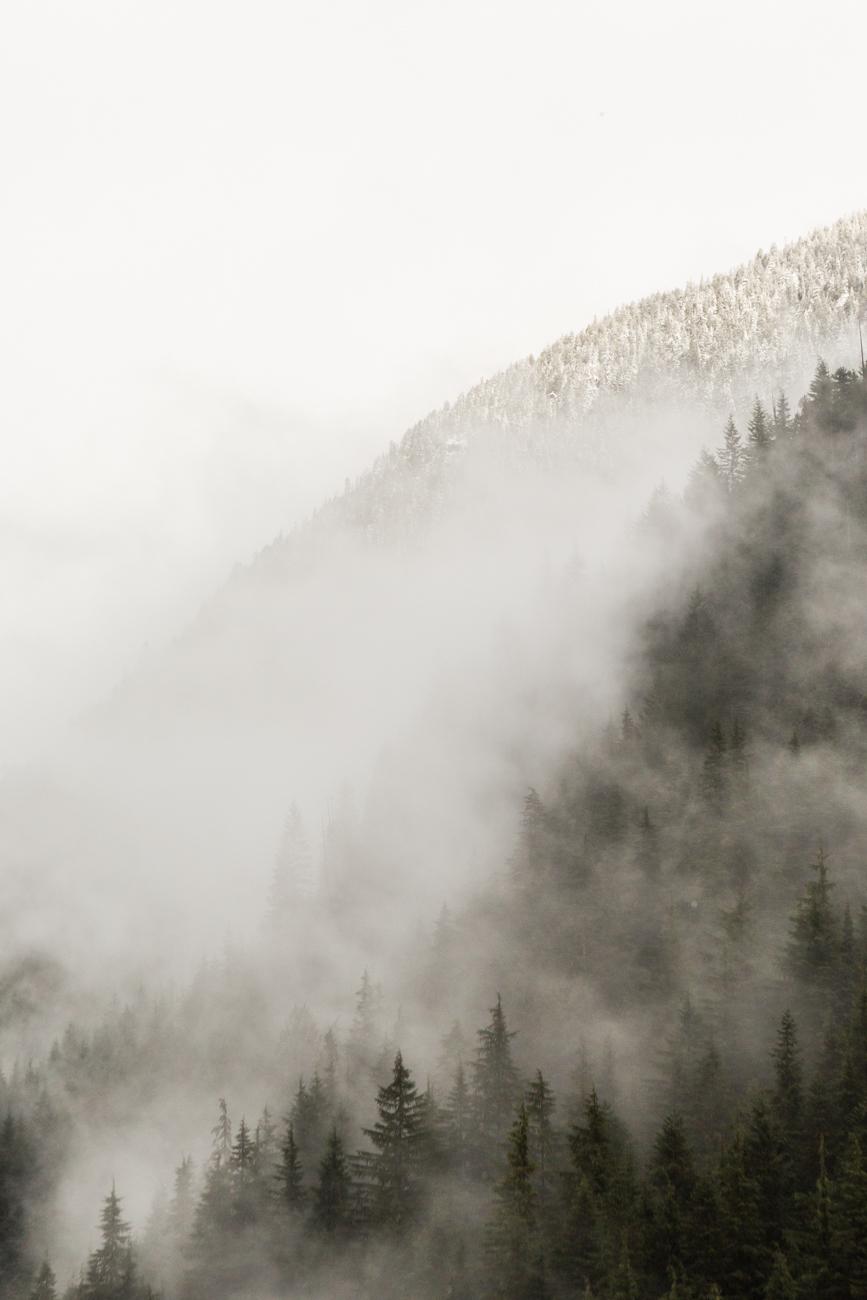 Bolandia-Blogger-Vancouver-Alder-Flats-Hike-Golden-Ears-Park-8123.jpg