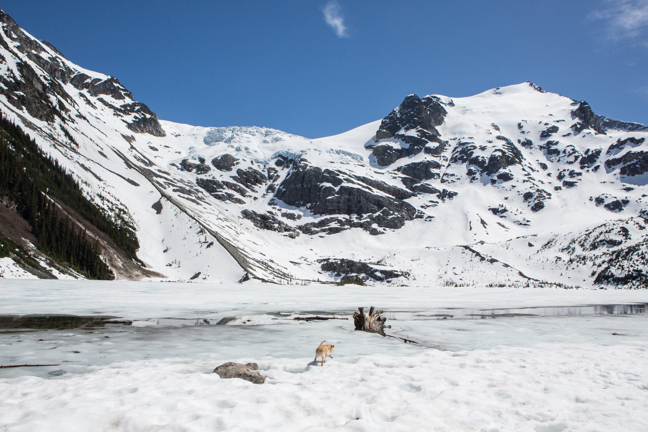 Bolandia-Blogger-Vancouver-Explore-BC-Hiking-Camping-Joffre-Lakes-Spring-Nairn-Falls-1618.jpg