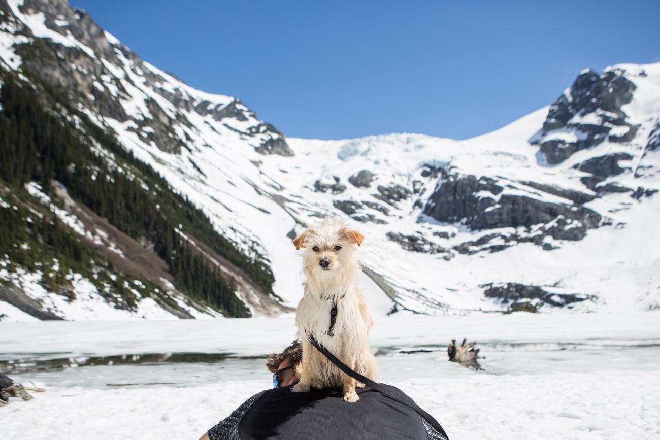 Bolandia-Blogger-Vancouver-Explore-BC-Hiking-Camping-Joffre-Lakes-Spring-Nairn-Falls-1642.jpg