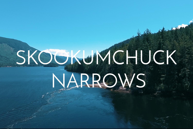 skookumchuck-narrows-drone-sunshine-coast.jpg