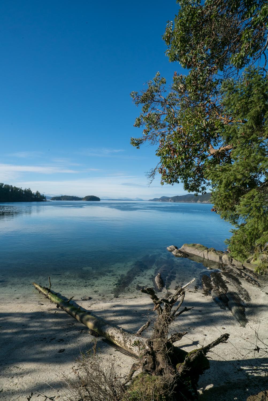 Galino-Island-Explore-BC-Bolandia-7-2.jpg