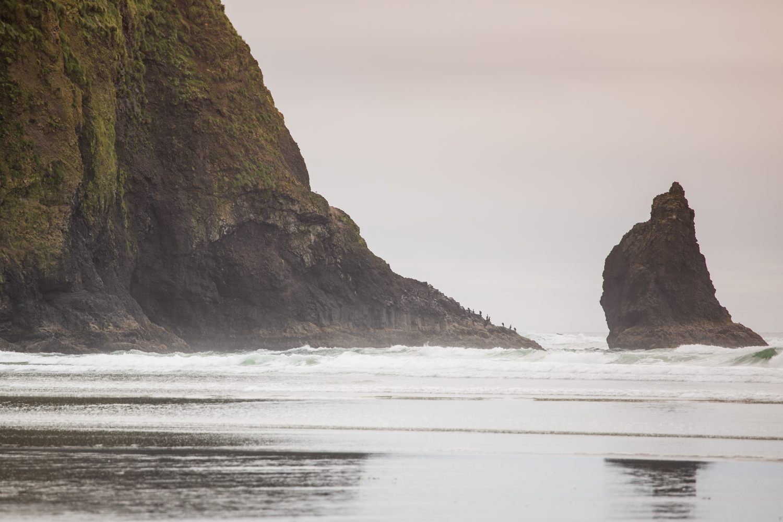 Oregon Coast Road Trip _ Bolandia -5O1A1622.jpg