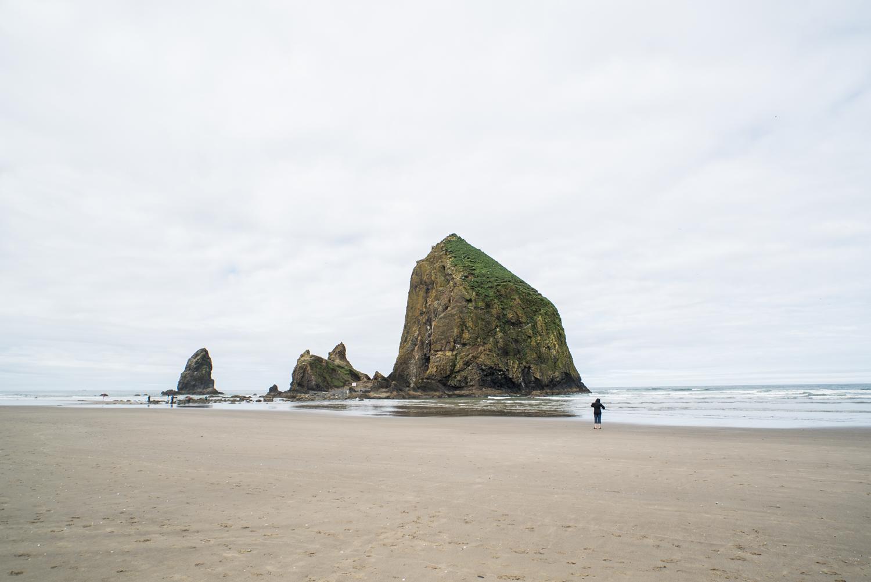 Oregon Coast Road Trip _ Bolandia -DSC09979.jpg
