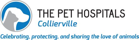 The-Pet-Hospitals-Collierville-logo.png