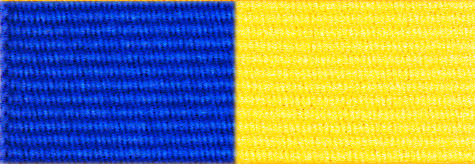Royal Blue & Yellow