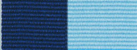 Navy & Light Blue