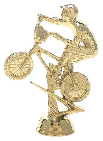 "BMX Bike - Male   5000-G - 4.75"" tall"