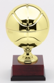 Full Size Sports Ball Trophies