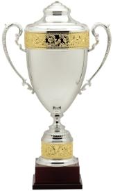 Premium Italian Silver Plated Cups