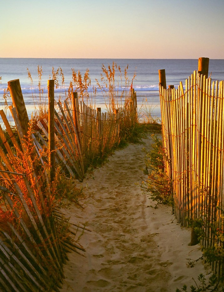 715_nathen-sand_fence_at_folly_beach (1).jpg