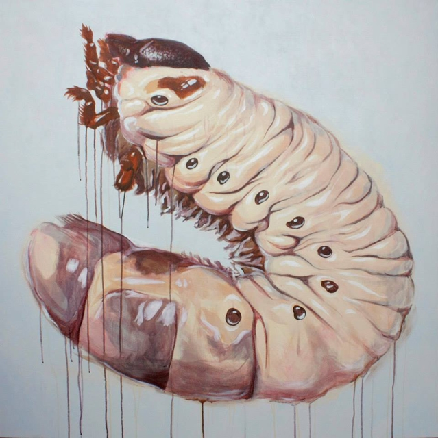 "Gravity I    48 x 48"" Acrylic on canvas   2013"