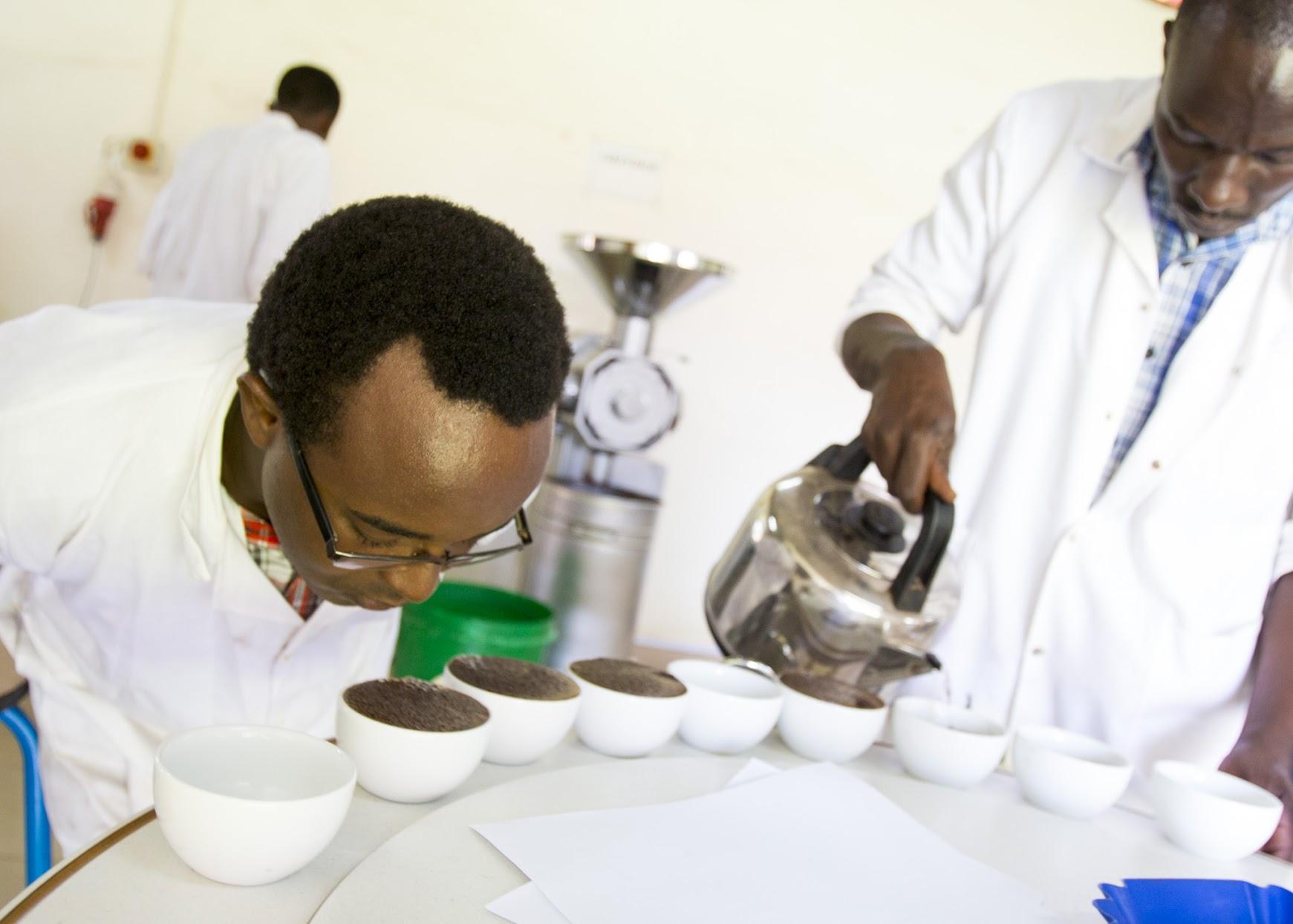 "Gerald Katabazi, aka ""The Hustler,"" wants his fellow Ugandans to drink more coffee. (Tim McDonnell)"