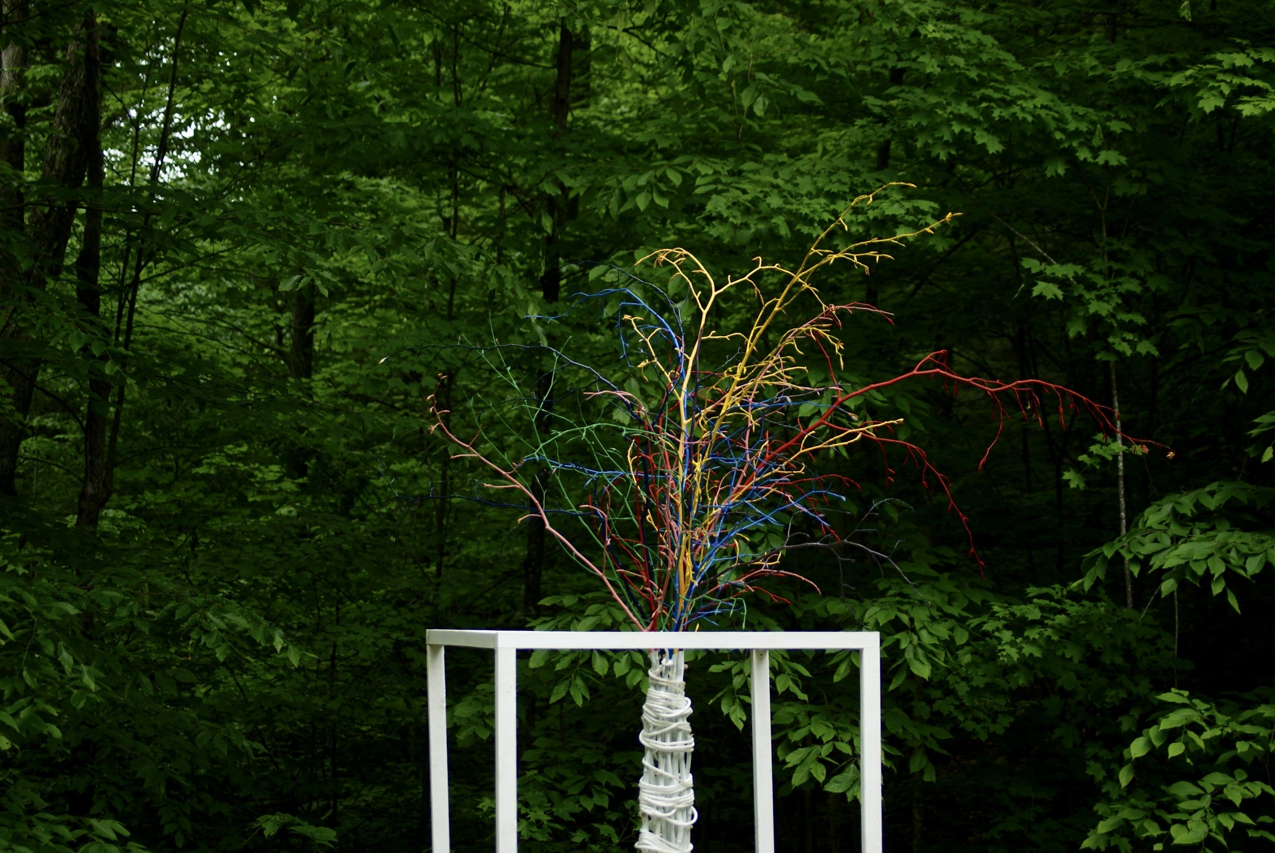 """Possibility""  2017  Wood, paint, tree branches, rope  Click  here  to see additional photos"