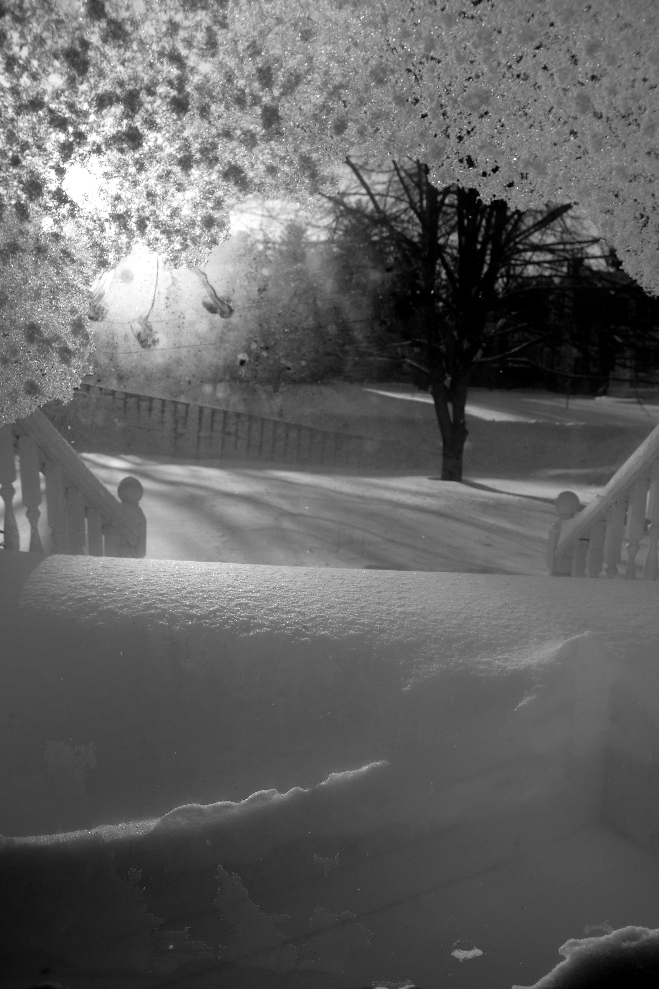 20171215-front-door-snow-sun-jpg.jpg