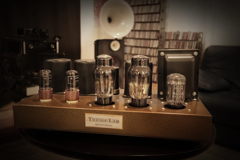 Model History — TRIODE LAB