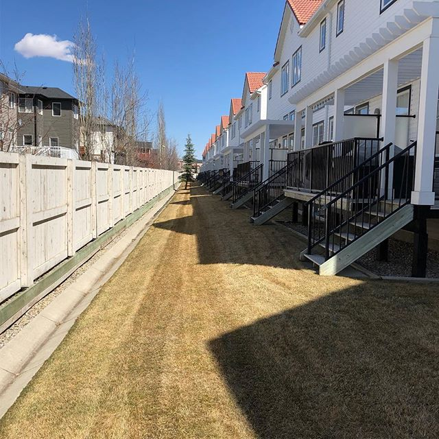 All neat and tidy 💫 . . . #landscaping #calgary #cochrane #yyc #yyclandscaping #calgarylandscaping #lawncare #familybusiness #shopyyc #smallbusinessyyc #lux #yycliving #yyclandscaping #maintenance #lawnmowing #trimming #sod #mulch #construction #fertilizer #customerservice #customersfirst #family #springcleanup #aeration