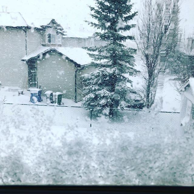 Freak April snow storm.  Spring clean ups 🚨🚧🛑 . . . #landscaping #calgary #cochrane #yyc #yyclandscaping #calgarylandscaping #lawncare #familybusiness #shopyyc #smallbusinessyyc #lux #yycliving #yyclandscaping #maintenance #lawnmowing #trimming #sod #mulch #construction #fertilizer #customerservice #customersfirst #family #springcleanup #aeration