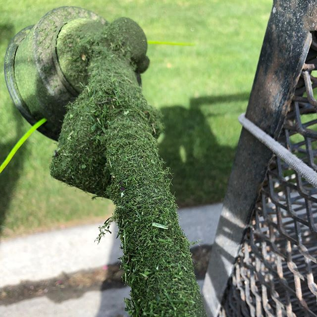 Werk it 💚 . . . #landscaping #calgary #cochrane #yyc #yyclandscaping #calgarylandscaping #lawncare #familybusiness #shopyyc #smallbusinessyyc #lux #yycliving #yyclandscaping #maintenance #lawnmowing #trimming #sod #mulch #construction #fertilizer #customerservice #customersfirst #family #springcleanup #aeration