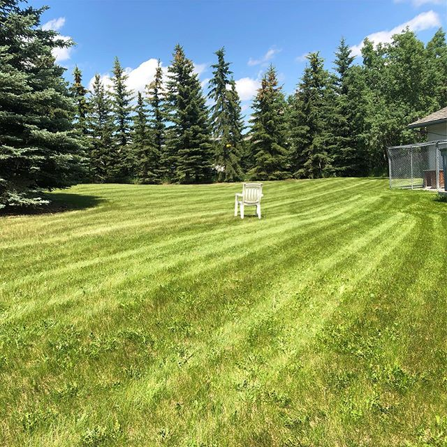 Those lines tho 👌🏽 . . . #landscaping #calgary #cochrane #yyc #yyclandscaping #calgarylandscaping #lawncare #familybusiness #shopyyc #smallbusinessyyc #lux #yycliving #yyclandscaping #maintenance #lawnmowing #trimming #sod #mulch #construction #fertilizer #customerservice #customersfirst #family #springcleanup #aeration