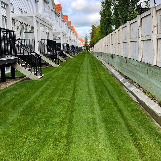Straight and narrow ⬆️ . . . #landscaping #calgary #cochrane #yyc #yyclandscaping #calgarylandscaping #lawncare #familybusiness #shopyyc #smallbusinessyyc #lux #yycliving #yyclandscaping #maintenance #lawnmowing #trimming #sod #mulch #construction #fertilizer #customerservice #customersfirst #family #springcleanup #aeration