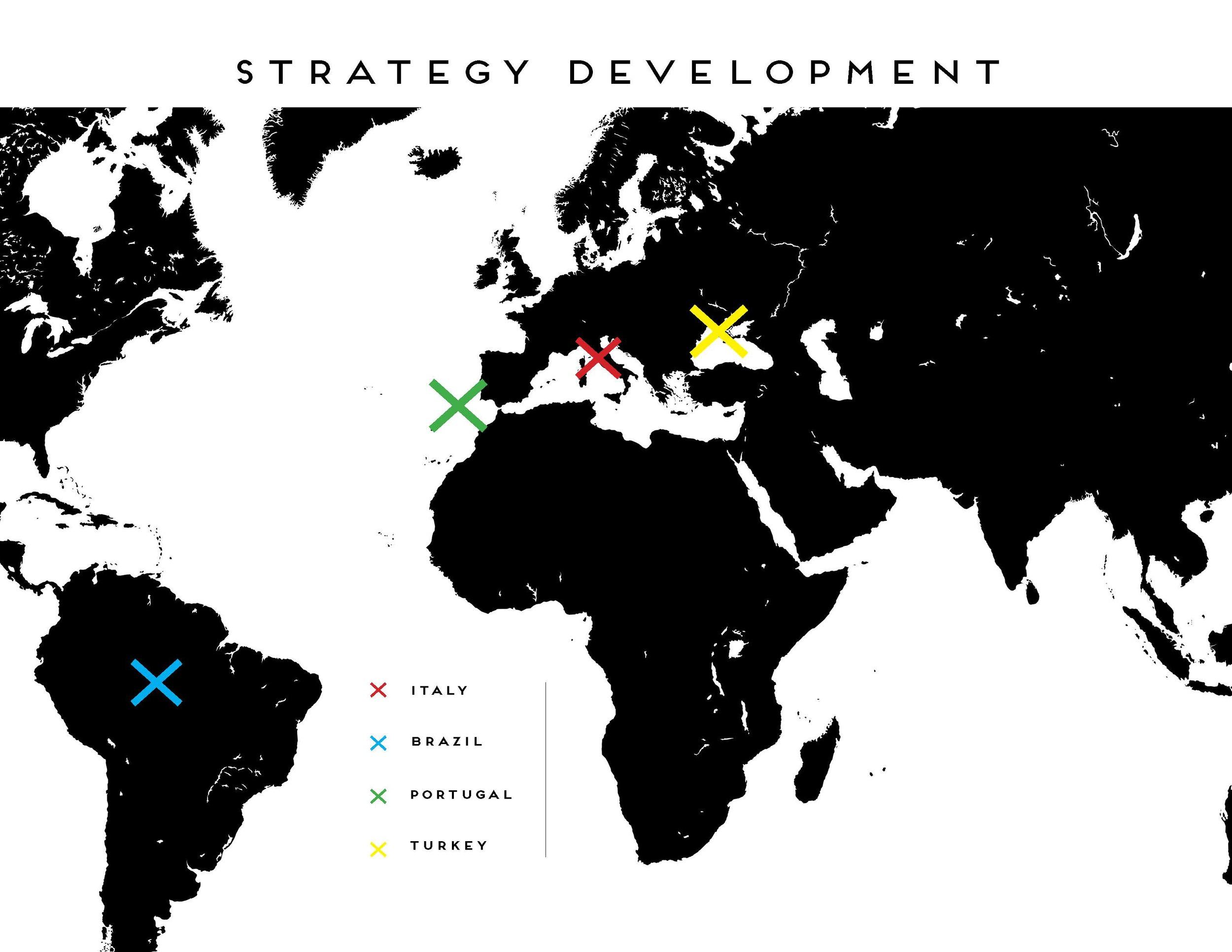 Final Strategy Presenation_Page_07.jpg