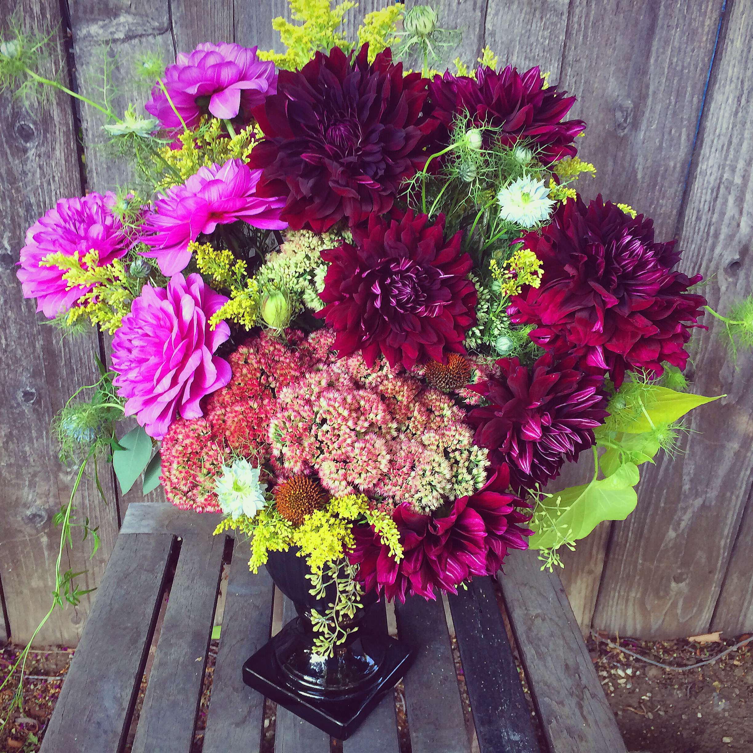 And these dahlias for someone special.