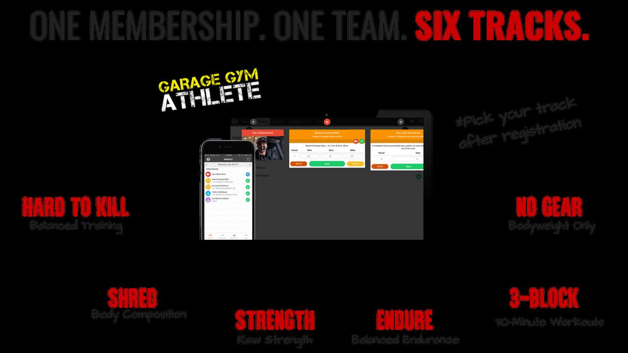 Training — Garage Gym Athlete