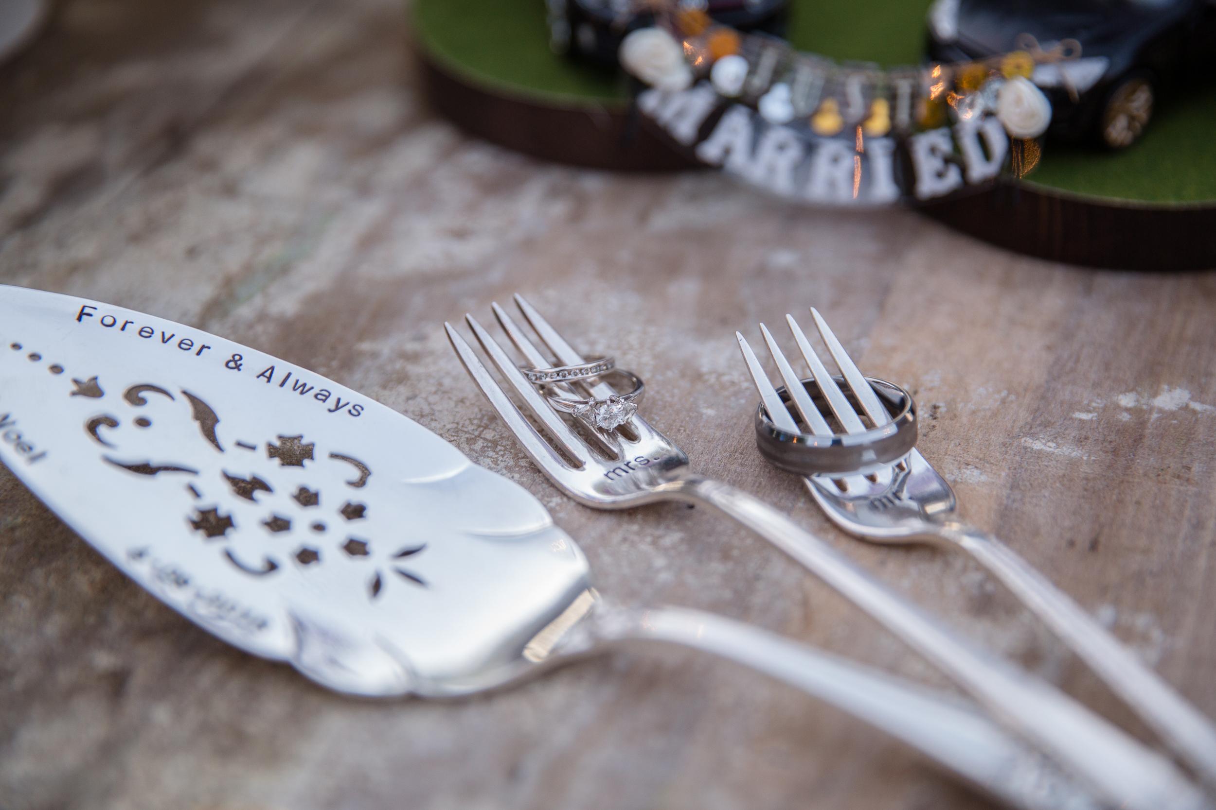 Quarters K Charleston Wedding - vintage lavender, silver and gray coastal wedding design (312).jpg