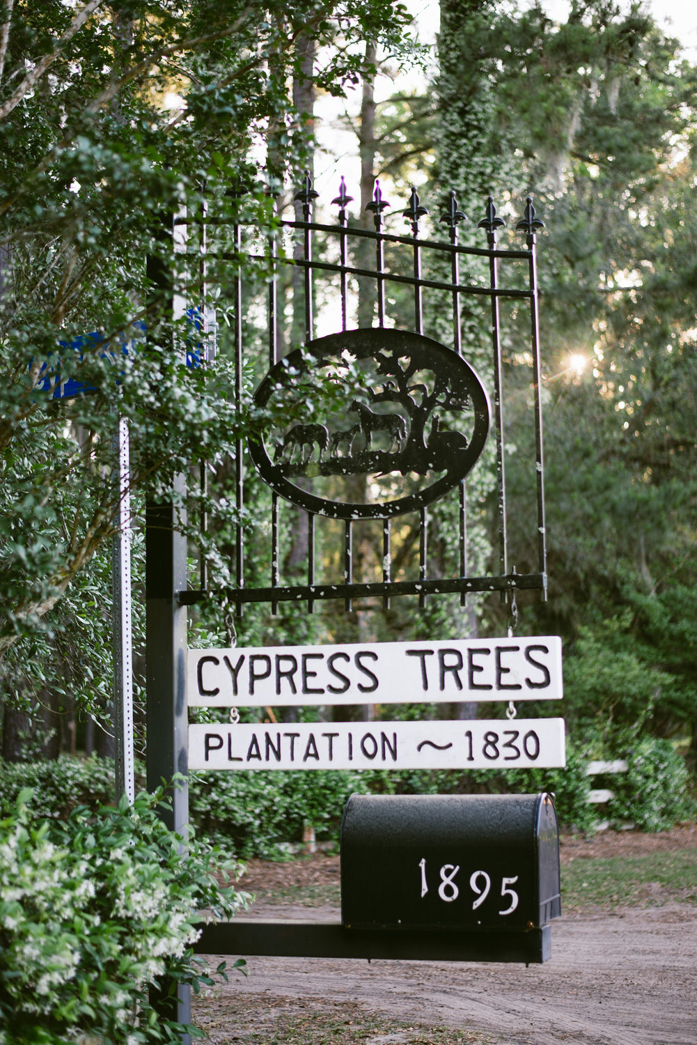 Edisto Island Wedding at Cypress Trees Plantation - Charleston Destination Luxury Wedding Planner - Scarlet Plan & Design (1).jpg
