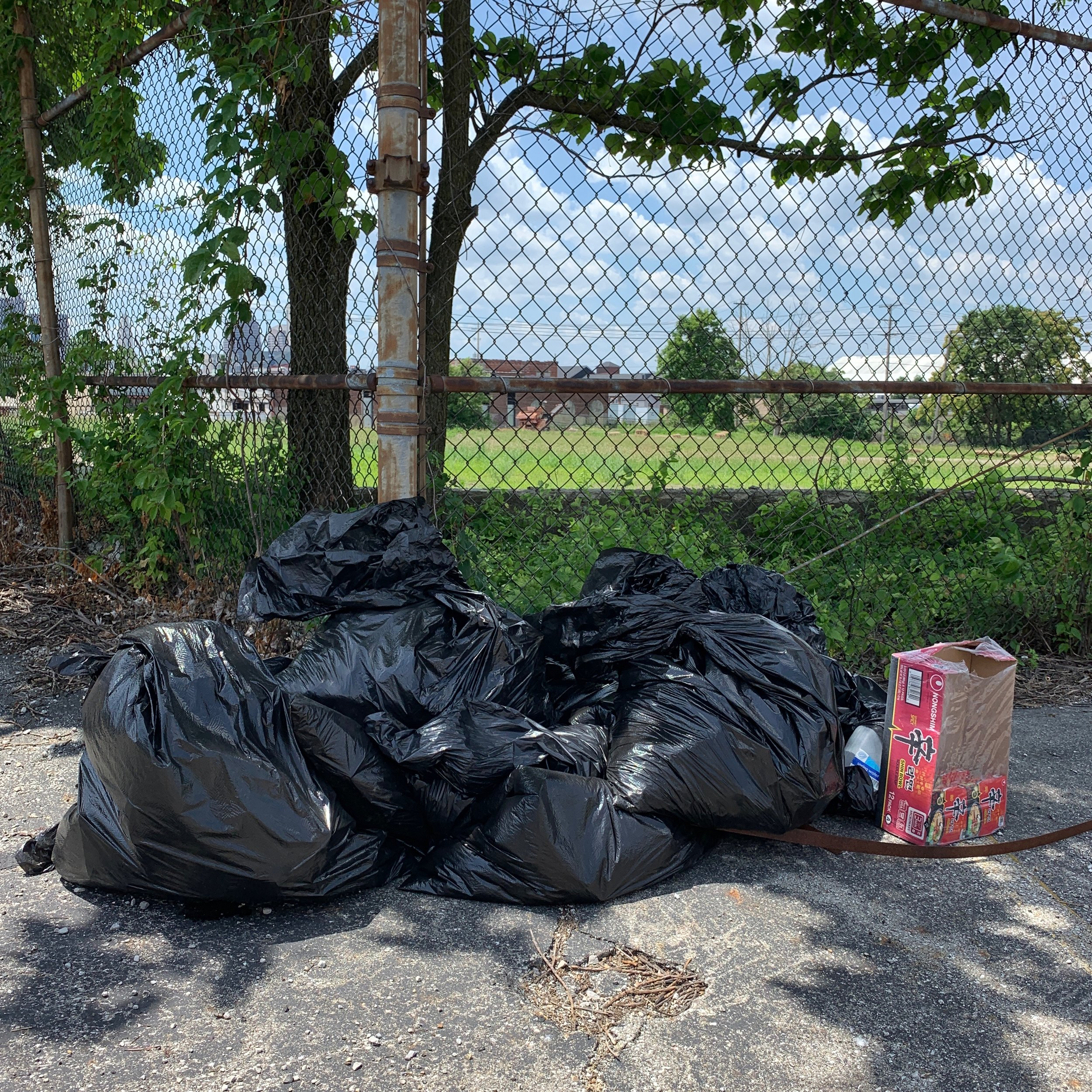 2019-07-02_Litter-CleanUp_00008.jpeg
