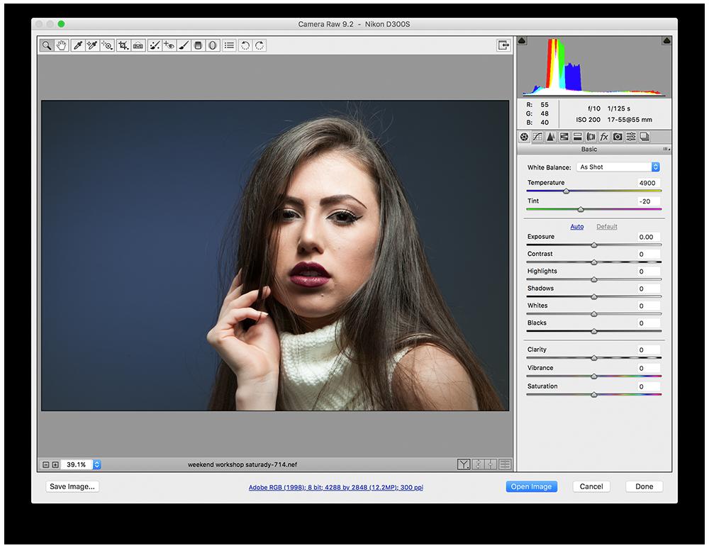 Adobe Camera RAW Preview | nickdjeremiah.com