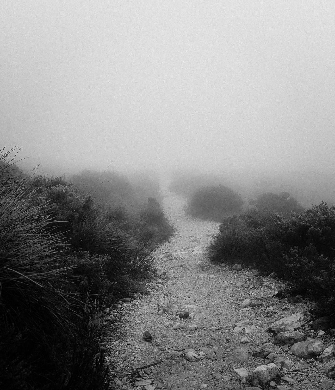 Walk Quietly 3 | nickdjeremiah.com