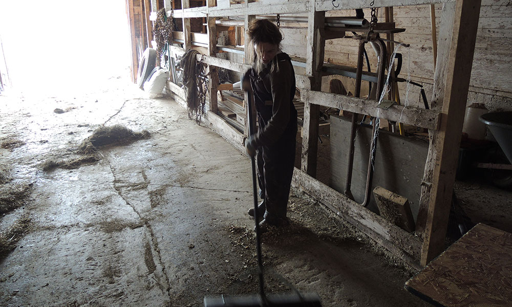 I mucked the coop and such. Love our barn. Here sweeping up after.