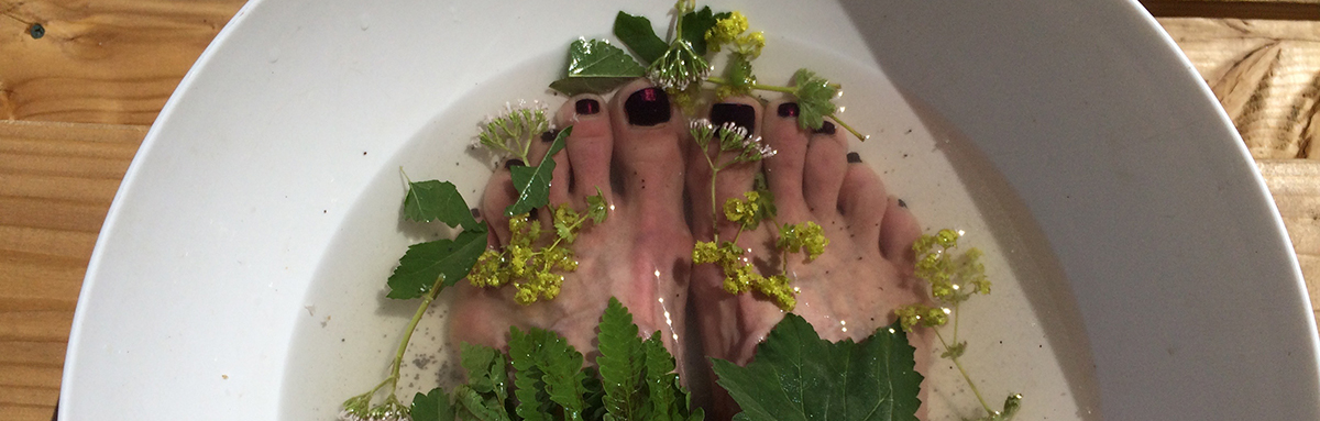 Lady's Mantle, Valerian, Marshmallow and Fern...in a bath of salts and poppy seed.