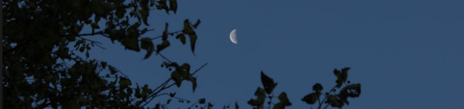 Third Quarter Moon: in another season, but you get it. :)