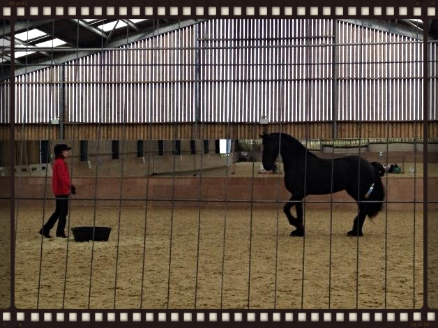 Janine with her lovely mare