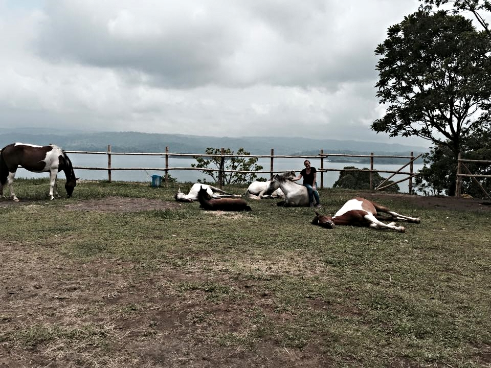 Nancy Zintsmatster with her horses in Costa Rica after a 5 day WHR clinic