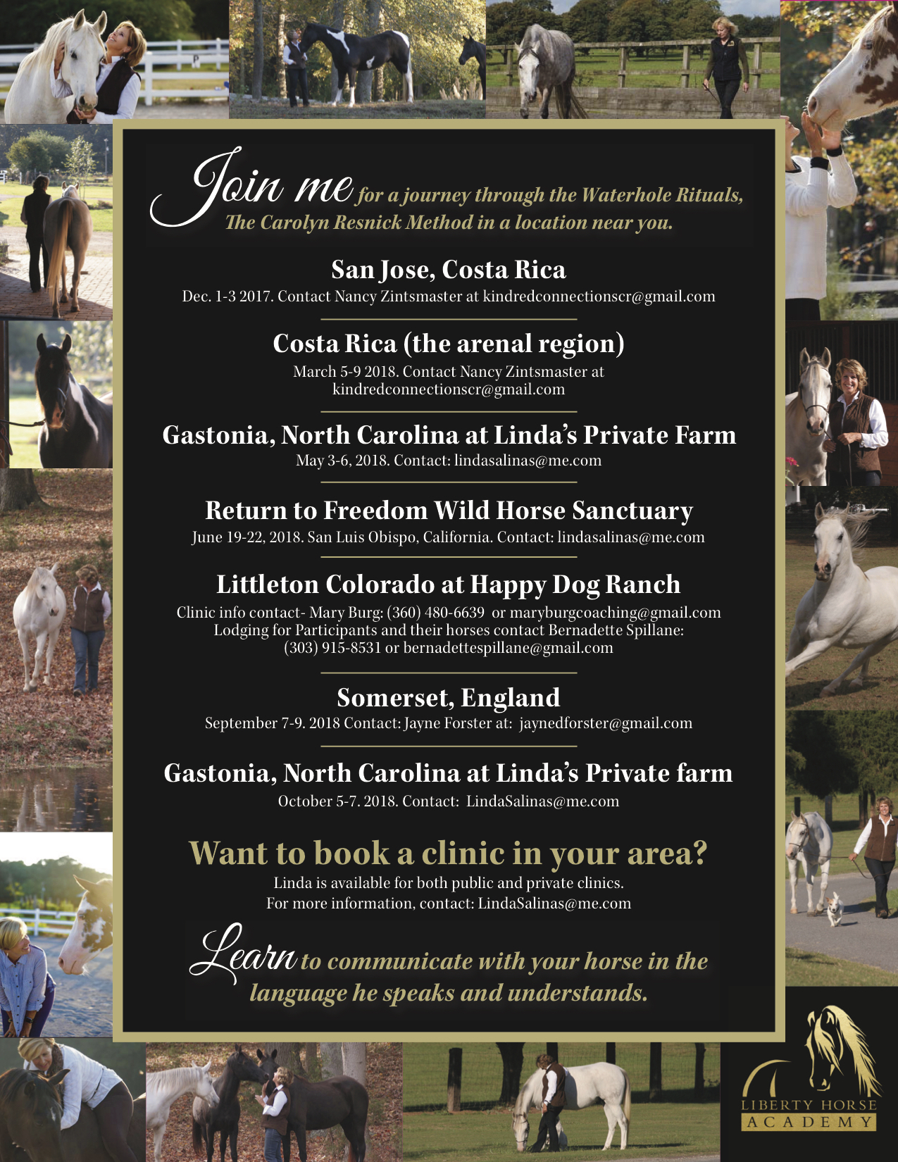 Final Liberty Horse Academy Flyer.jpg