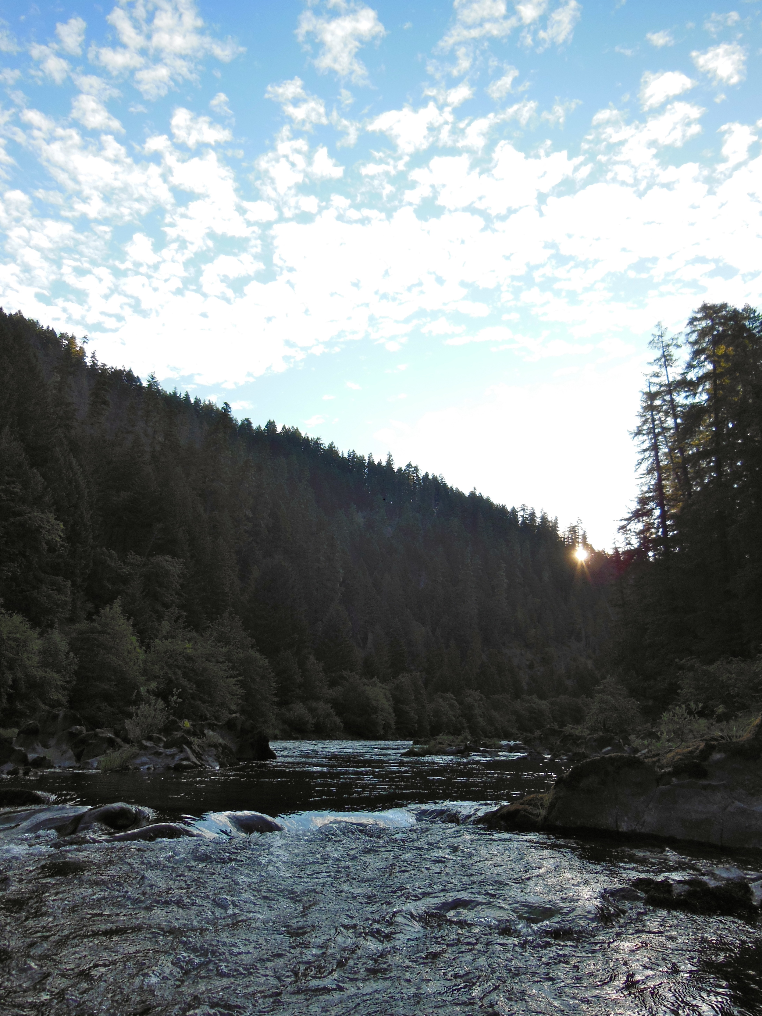 Guided fly fishing for steelhead on Oregon's legendary North Umpqua