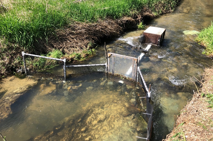 Fish trap, catching young of the year and smolt on their way downstream