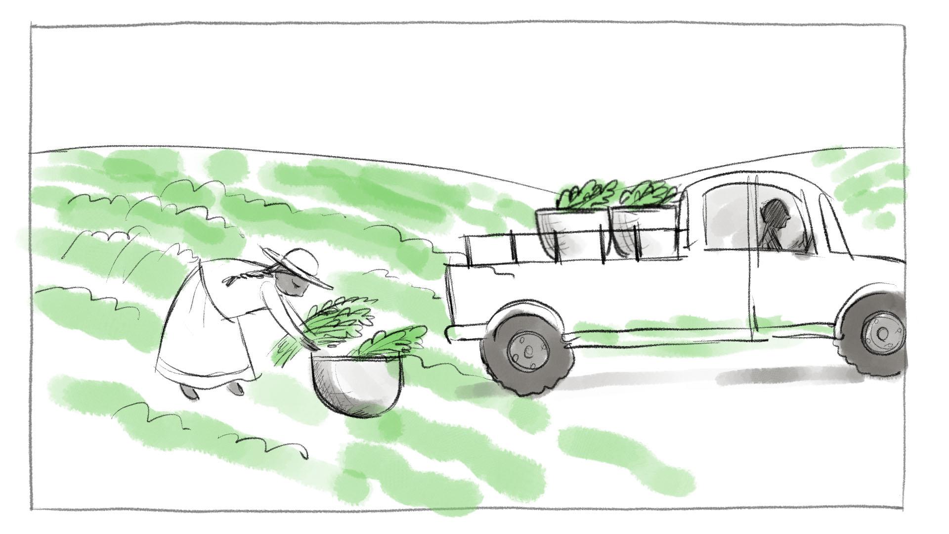 Shahidi_Storyboards_3a-1.jpg