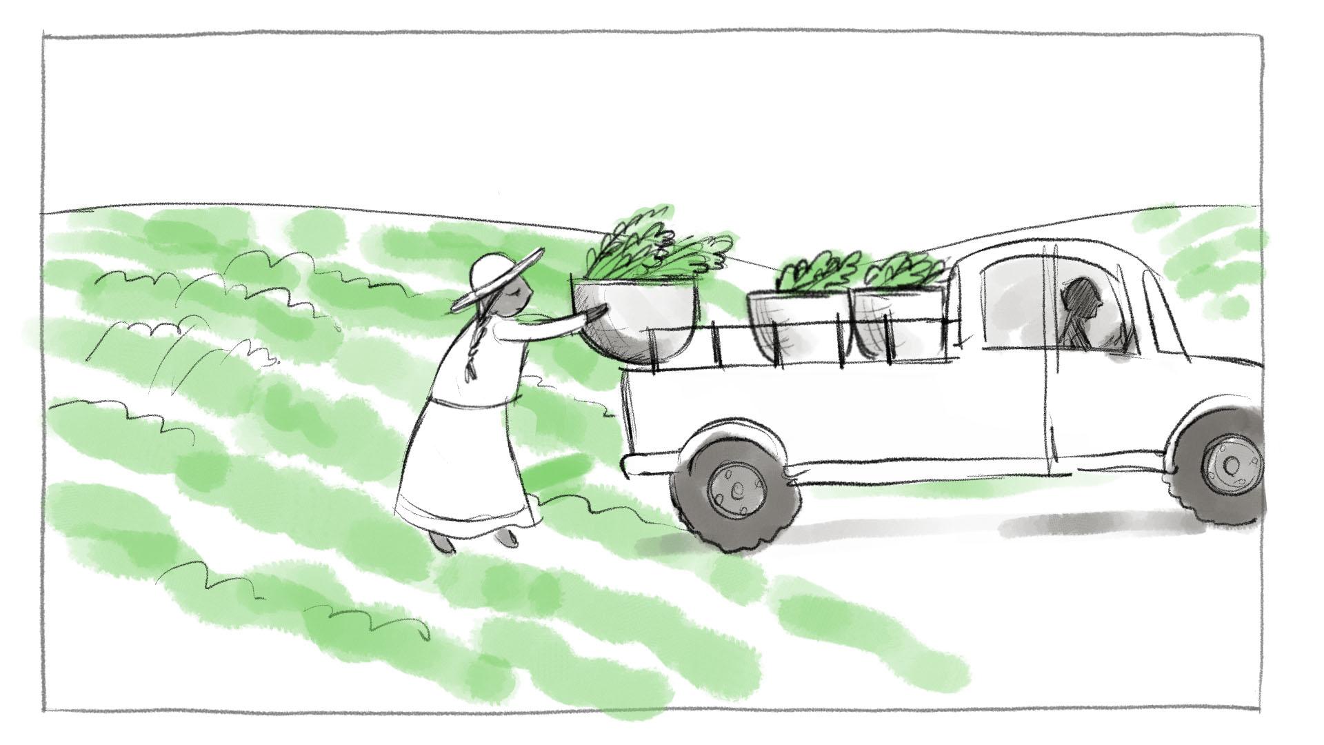 Shahidi_Storyboards_3b-1.jpg