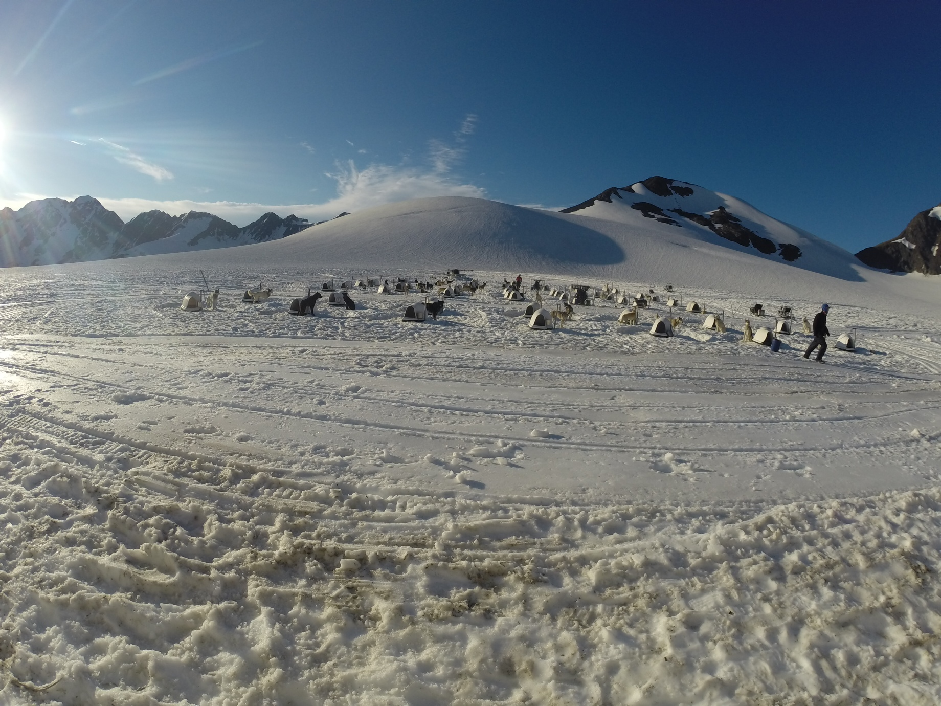 A sunny morning looking out towards the dog yard at Punch Bowl glacier.
