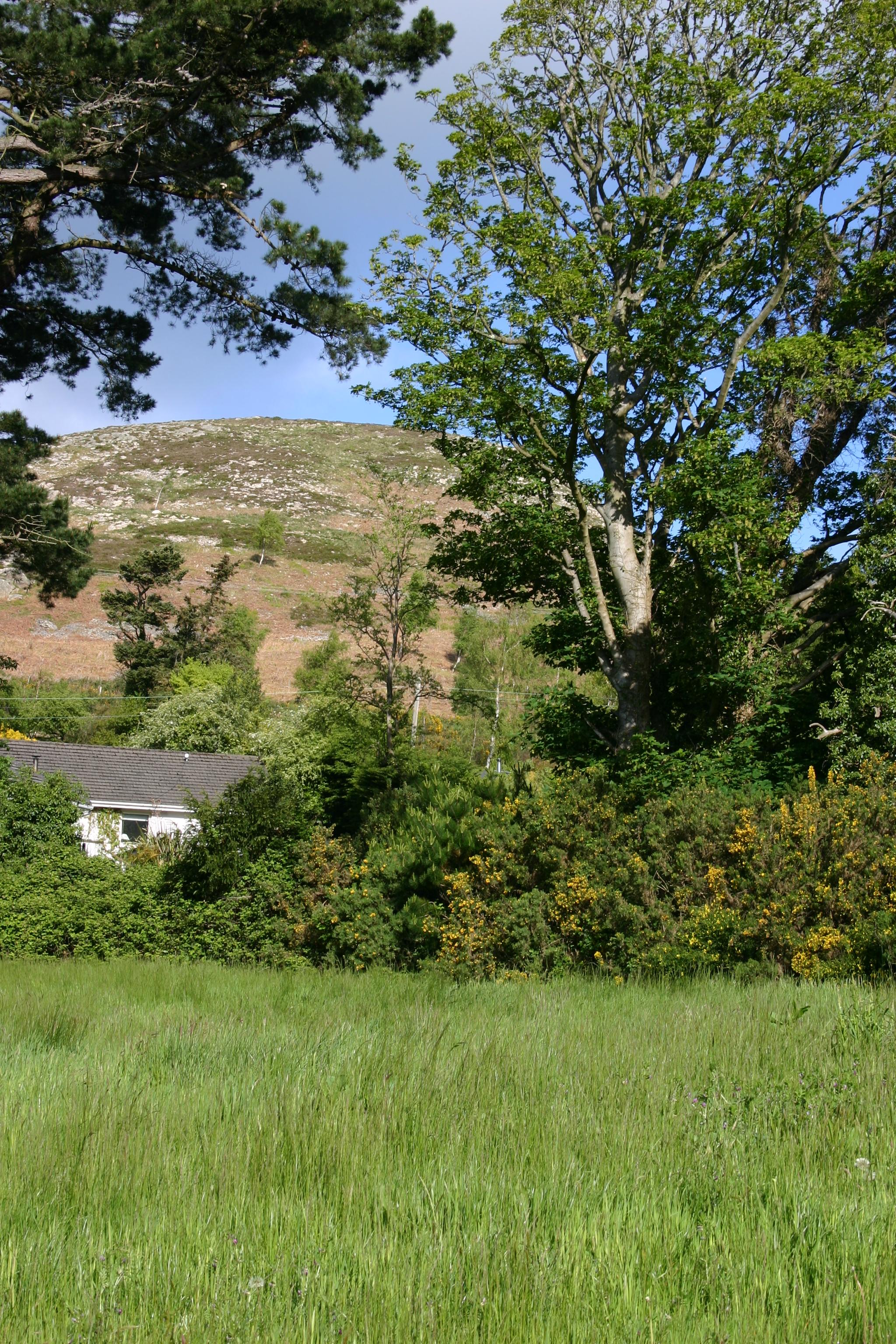 view wicklow.jpg